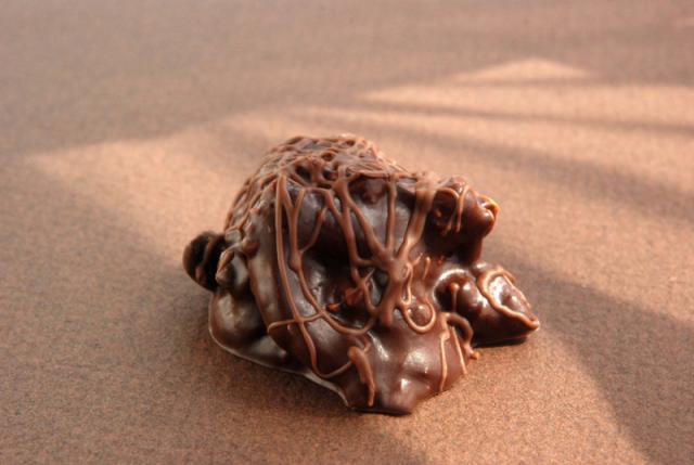 Dark Chocolate Peanut Pretzel Cluster